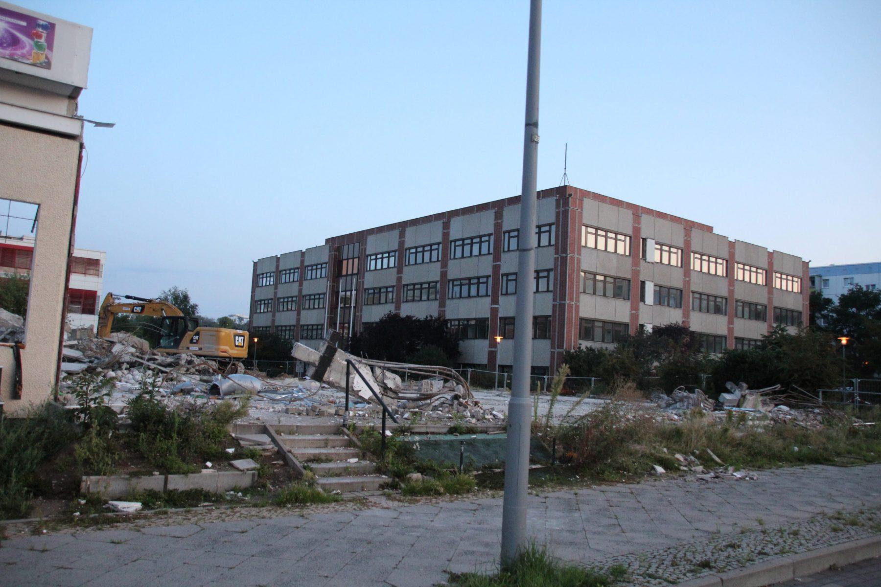 IMG_2010-scaled